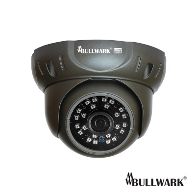 Bullwark BLW-2201IP-D 2MP Infrared Dome IP Kamerası